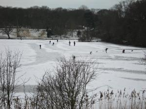 Waterpartij in de winter